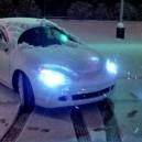 Snowy type S